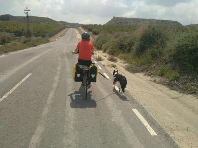 Cicloturismo con perro y alforjas