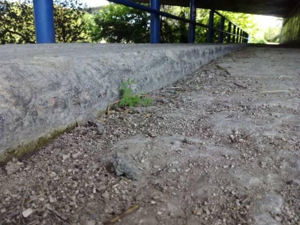 Tunel-4-detalle-altura-parte-lisa-parte-rugosa