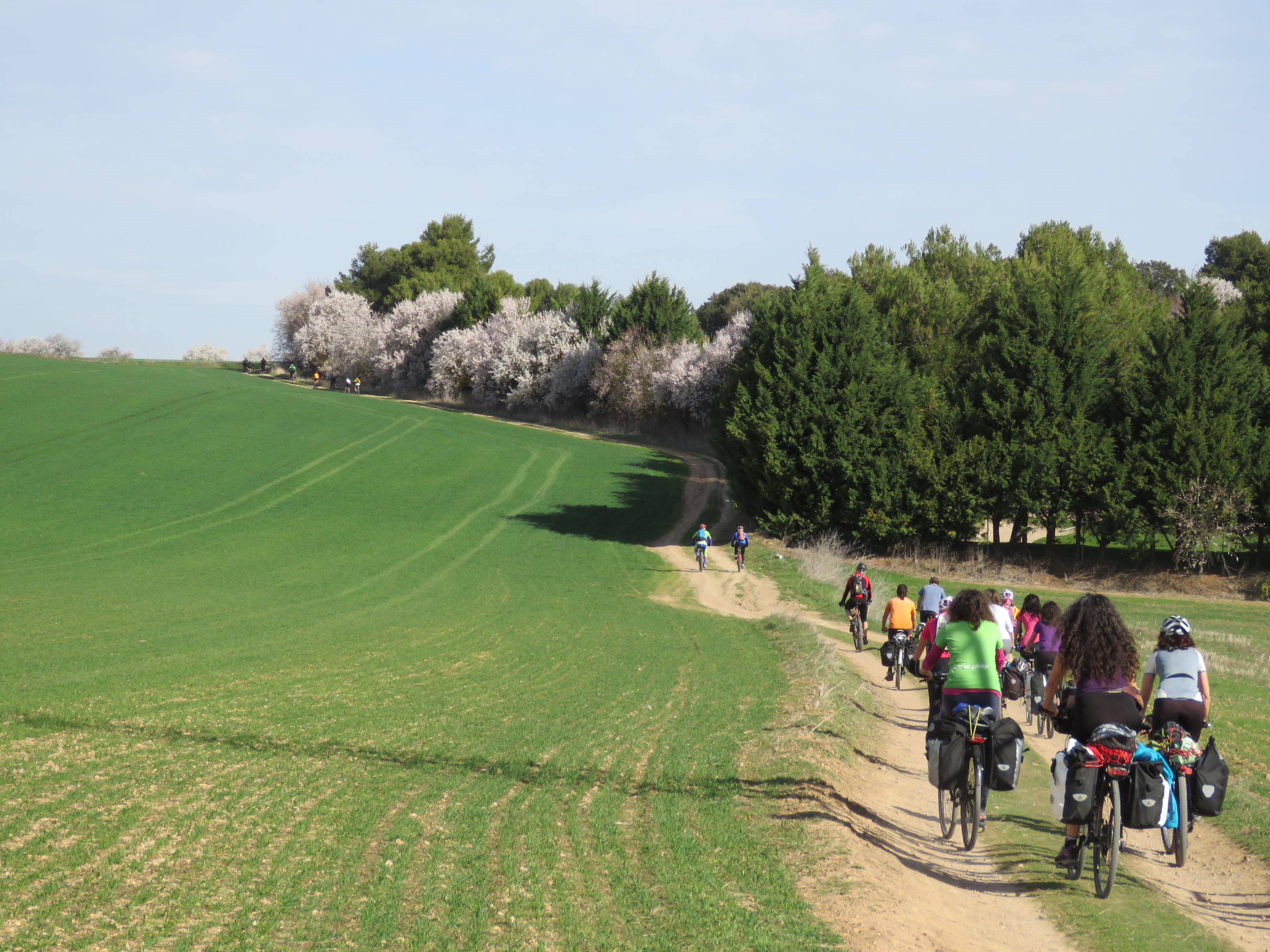 Ruta Montes Torozos 4